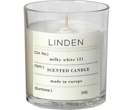 Duftkerze Linden (Lindenblüten)