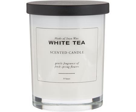 Duftkerze White Tea (Pudrig & Weisser Tee)